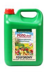 plonochron_fosforowy_2015