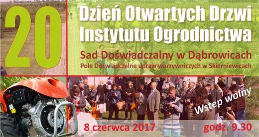 dąbrowice.2017