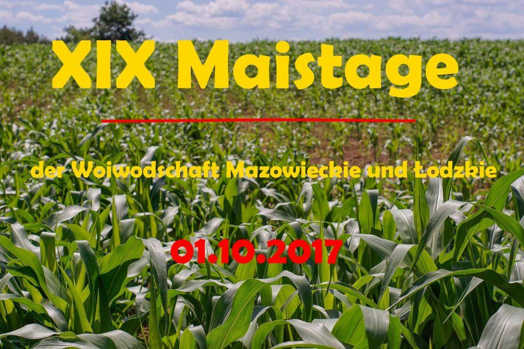 dni kukurydzy